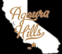DUI Attorney Agoura Hills