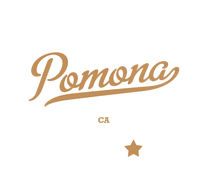 DUI Lawyer Pomona