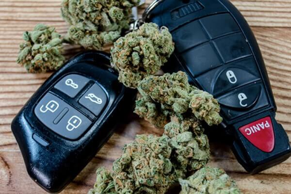 driving and cannabis san marino
